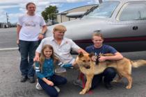 Perro se reúne con su familia en Florida después de pasar dos años desaparecido