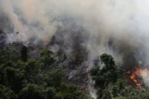Descubren en la atmósfera una región cubierta por monóxido de carbono producido por incendios del Amazonas