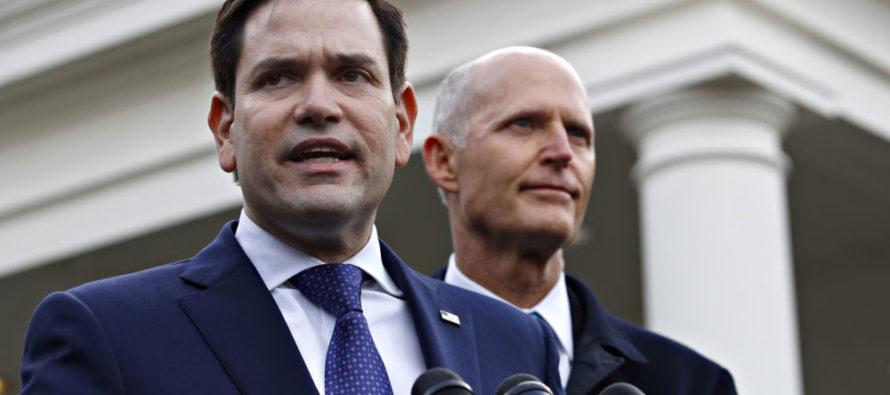 Marco Rubio, Rick Scott instaron al Departamento de Comercio a declarar «desastre pesquero» en el suroeste de Florida