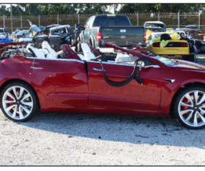 El piloto automático del auto Tesla causó un choque mortal