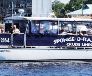 Señora de Florida fue arrestada por manosear el trasero de otra mujer casada en un crucero
