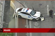 Oficial de policía de Miami resultó herido en choque en la madrugada