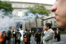 100.000 firmas en 20 días logró campaña para legalizar la marihuana en Florida