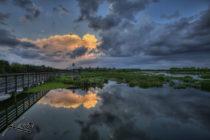 Humedales de Wakodahatchee catalogado como el mejor parque de la Florida