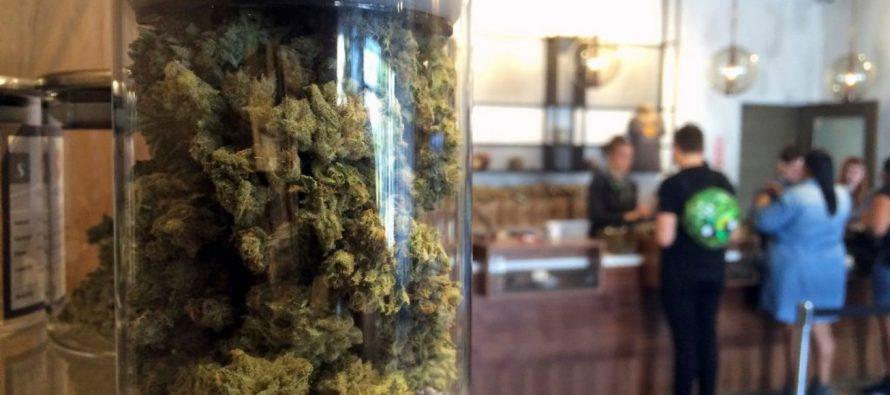 Autorizan apertura de dispensarios de marihuana medicinal en West Palm Beach