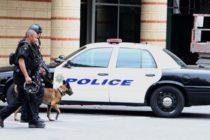 Policía captura a hombre que arrolló a anciana en Miami