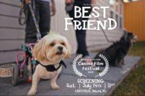 Los Perros toman las butacas en Festival de cine de Miami