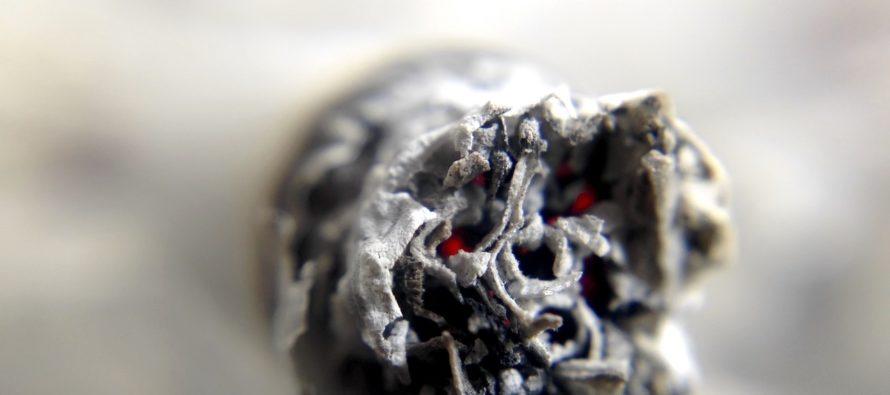 ¿Fumar marihuana en Florida?… Tribunales dijeron que no