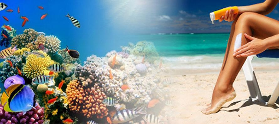 Senado de Florida busca eliminar leyes que prohíben ventas de protectores solares que dañan corales