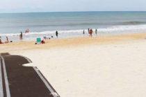 Grandes esteras negras inundan las playas de Florida