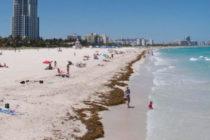 Levantan alerta de contaminación en dos playas de Miami-Dade