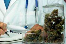 Aprueban el uso de medicamentos derivados del cannabis en el Reino Unido