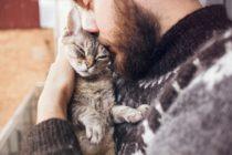 Cuarta campaña de adopción de animales este sábado en Florida