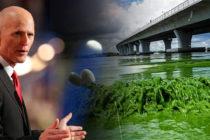 Gobernador Scott aporta 400 mil dólares al condado Lee para limpieza por algas tóxicas