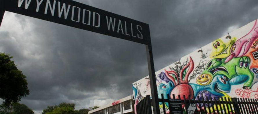 En una hora: Recogieron 600 libras de basura en Wynwood