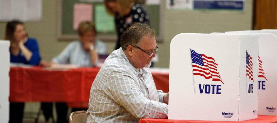 ¿Ya sabe lo que se vota en Florida en estas elecciones?