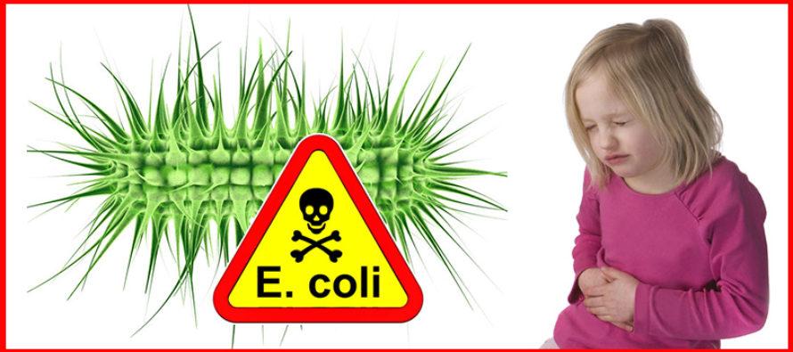 ¡Alerta! Brote de E. coli por carne molida contaminada se expande por Florida