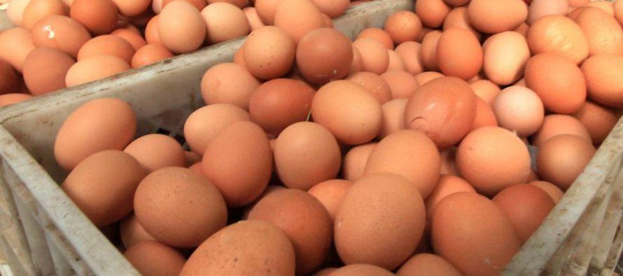 Salmonela en huevos de Gravel Ridge Farms han enfermado 14 personas