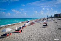 Tiburón causo pánico entre bañistas en South Beach