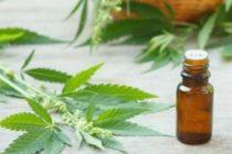 Aumenta aceleradamente inscripción para marihuana medicinal en Miami