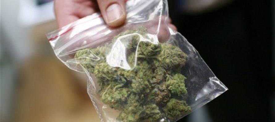 Tienda de artículos usados en Florida recibió donación de marihuana