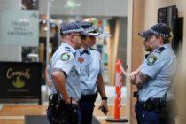 La policía de Tampa busca a cinco hombres que robaron 1000 dólares en habanos