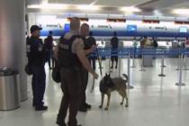 Refuerzan seguridad en el Aeropuerto de Miami en víspera del 17° aniversario del ataque a las torres gemelas