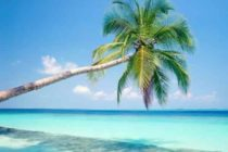 Escoge entre estas cinco opciones tu playa preferida en South Beach Miami