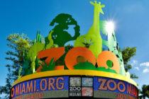 Zoológico de Miami toma precauciones ante alerta por rabia