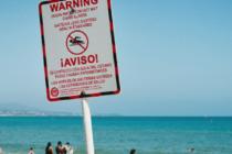Playas de Florida sufren los embates de la Marea Roja