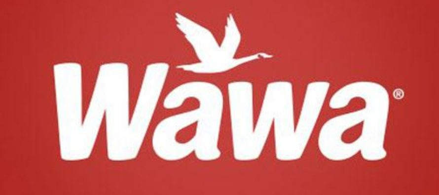 Exitosa cadena WAWA llega a Miami y abrirá en 2019 simultáneamente tres sucursales