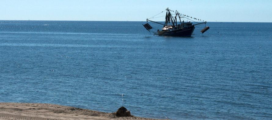 Liberación de barco camaronero en Ormond Beach se convierte en todo un espectáculo deportivo