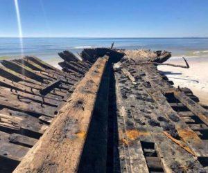 'Michael' descubre barcos hundidos en 1899 en EU