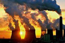 La ONU advierte que la Tierra se enfrenta a una nueva extinción masiva de animales y plantas