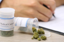 Florida vive una transición desde los opioides hacia el cannabis medicinal