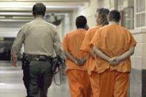 Guardia de seguridad de Disney entre los 124 arrestados por cargos de prostitución de menores en Florida