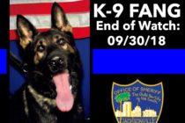 Sospechoso de robo de auto mató a perro de Unidad Canina K-9