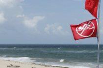 Cierran playas de Haulover Inlet por concentración de marea roja