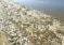 Cierran playas: marea roja continúa afectando las costas de Florida