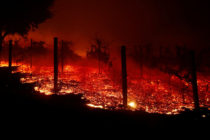 A nueve asciende número de muertos por incendio en California