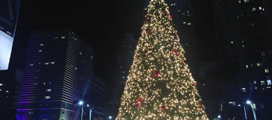Comisionado invita al encendido del árbol de Navidad en Miami