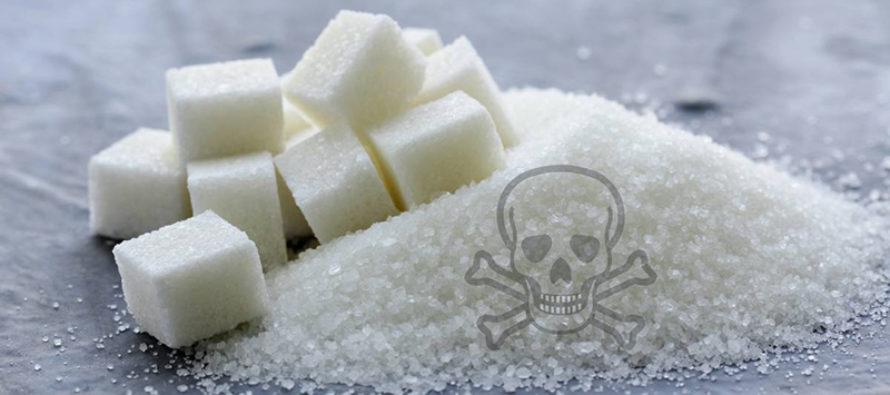 Avilio Muñoz Albornoz MD: Vida sin pan – Ríos de azúcar