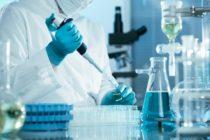 Presidente de ACS se dedicará a fortalecer vínculos internacionales entre investigadores