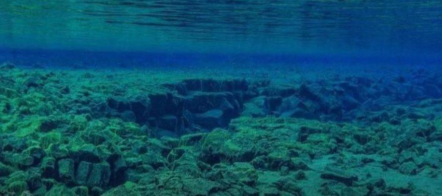 Maravillas insólitas: erupción de volcán en el fondo del mar crea jardín único en el mundo