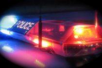 Operativo de tráfico humano en Florida arrojó un saldo de 85 personas detenidas