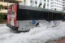 Así es el violento impacto del cambio climático en Florida