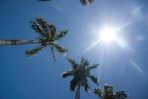 Clima de Miami: este será un fin de semana cálido
