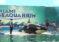 Miami Seaquarium lanza festival gastronómico y musical caribeño