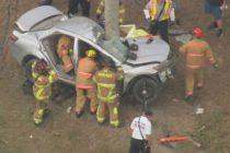 Un hombre quedó atrapado en su vehículo al impactar contra un árbol cerca de Quail Roost Drive