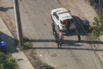 Cerraron escuela de Miami tras reporte de hombre armado en sus alrededores